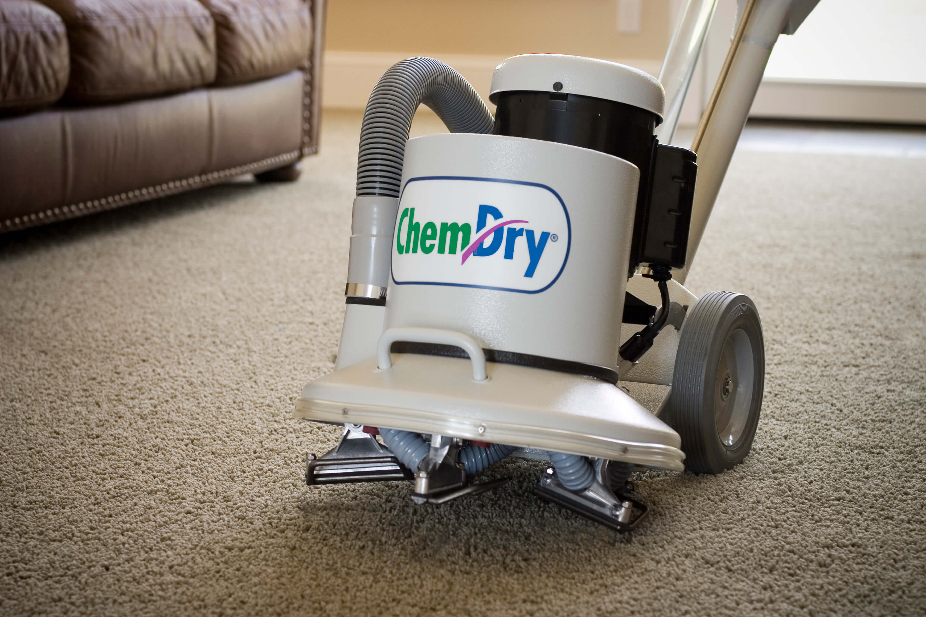 A Unique Approach To Carpet Cleaning In Seattle